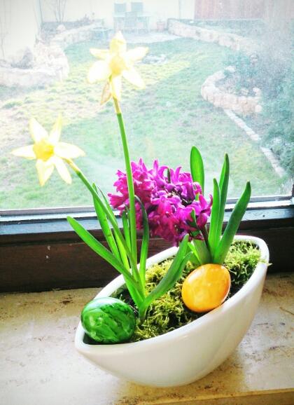 Ostern bei verschiedenArt: Blumen überall
